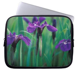 NA, USA, Alaska, Knight Island, Wild iris Laptop Sleeve