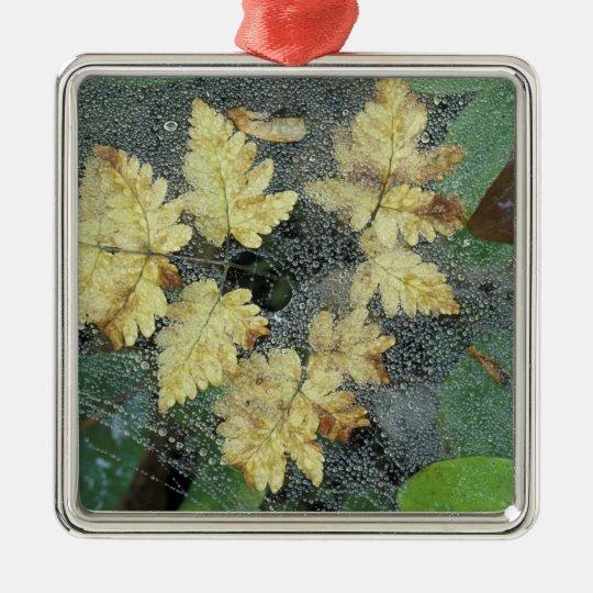 NA, USA, Alaska, Nancy Lake. Dew on spiderweb Metal Ornament