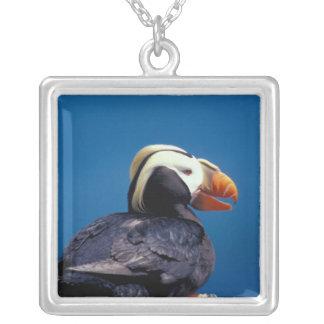 NA, USA, Alaska, Pribilof Islands, St. Paul Personalized Necklace