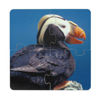 NA, USA, Alaska, Pribilof Islands, St. Paul Puzzle Coaster