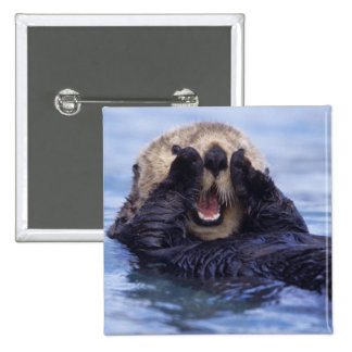 NA, USA, Alaska. Sea otters are the largest 2 Inch Square Button