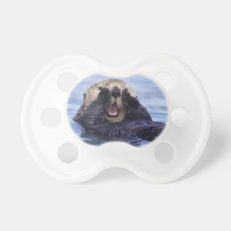 NA, USA, Alaska. Sea otters are the largest BooginHead Pacifier