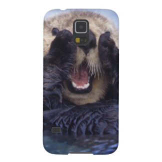 NA, USA, Alaska. Sea otters are the largest Galaxy S5 Cover