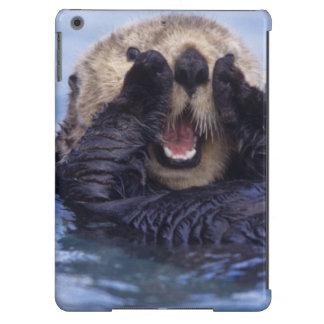 NA, USA, Alaska. Sea otters are the largest iPad Air Cover