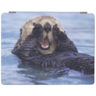 NA, USA, Alaska. Sea otters are the largest iPad Cover