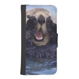 NA, USA, Alaska. Sea otters are the largest iPhone 5 Wallets