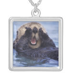 NA, USA, Alaska. Sea otters are the largest Jewelry