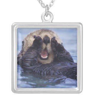 NA, USA, Alaska. Sea otters are the largest Square Pendant Necklace