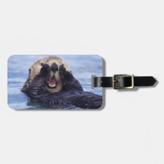 NA, USA, Alaska. Sea otters are the largest Tags For Bags