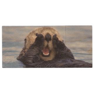 NA, USA, Alaska. Sea otters are the largest Wood USB 2.0 Flash Drive