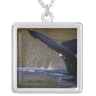 NA, USA, Alaska, Southeast Alaska, Inside 3 Silver Plated Necklace
