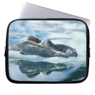 NA, USA, Alaska, Southeast Alaska, Le Conte 2 Laptop Sleeve