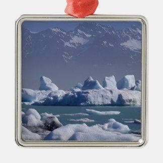 NA, USA, Alaska, St. Elias Range, Alsek River, Metal Ornament