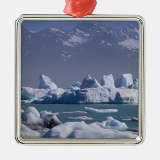NA, USA, Alaska, St. Elias Range, Alsek River, Ornaments