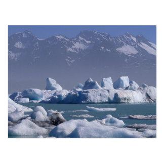 NA, USA, Alaska, St. Elias Range, Alsek River, Postcard