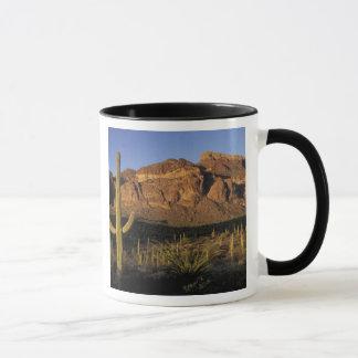 NA, USA, Arizona. Organ Pipe Cactus National 2 Mug