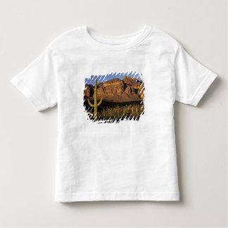 NA, USA, Arizona. Organ Pipe Cactus National 2 Toddler T-shirt