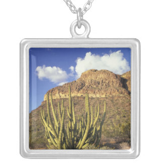 NA, USA, Arizona. Organ Pipe Cactus National 3 Square Pendant Necklace