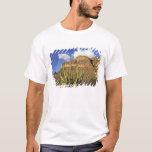 NA, USA, Arizona. Organ Pipe Cactus National 3 T-Shirt