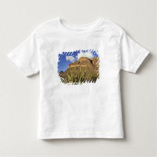 NA, USA, Arizona. Organ Pipe Cactus National 3 Tee Shirt
