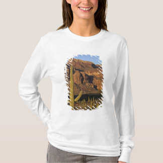 NA, USA, Arizona. Organ Pipe Cactus National T-Shirt