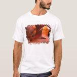 NA, USA, Arizona, Paria Canyon. Sandstone T-Shirt