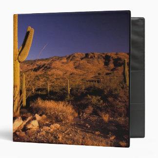 NA, USA, Arizona, Saguaro National Monument, Binder