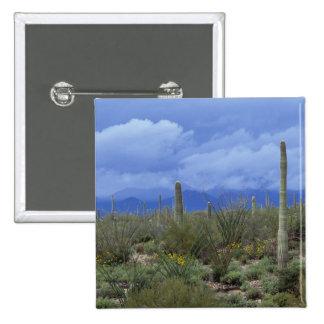 NA USA Arizona Saguaro National Monument Pin