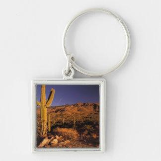 NA USA Arizona Saguaro National Monument Keychain
