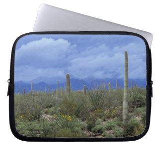 NA USA Arizona Saguaro National Monument Laptop Sleeve