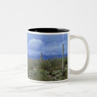 NA USA Arizona Saguaro National Monument Coffee Mugs