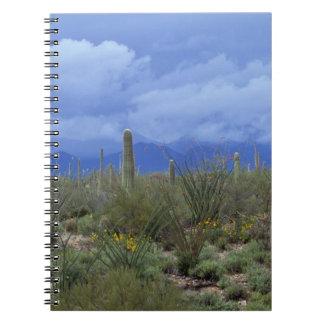 NA USA Arizona Saguaro National Monument Notebook