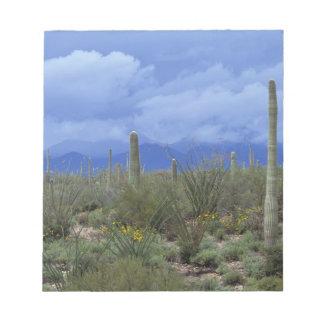 NA USA Arizona Saguaro National Monument Memo Pad
