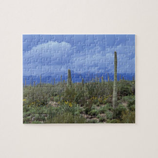 NA USA Arizona Saguaro National Monument Jigsaw Puzzle
