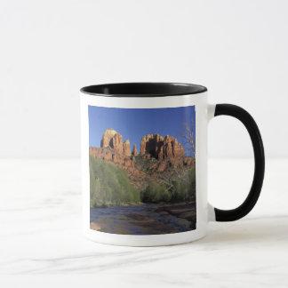 NA, USA, Arizona, Sedona. Cathedral Rock and Oak Mug