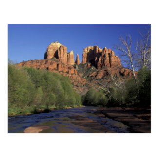 NA, USA, Arizona, Sedona. Cathedral Rock and Oak Postcard