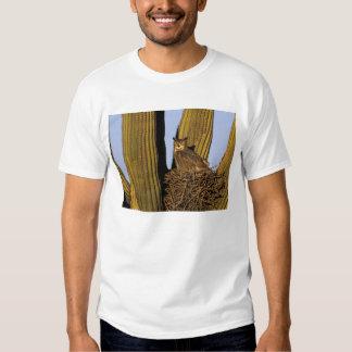 NA, USA, Arizona, Tucson. Great horned owl on T Shirts
