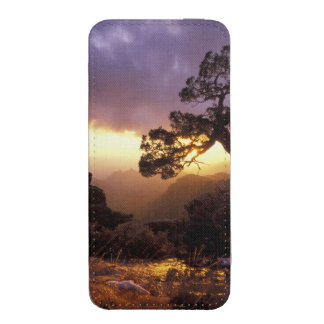 NA, USA, Arizona, Tucson, Sunset and lone iPhone 5 Pouch