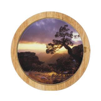 NA, USA, Arizona, Tucson, Sunset and lone Cheese Platter