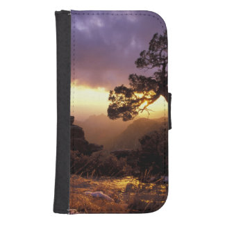 NA, USA, Arizona, Tucson, Sunset and lone Galaxy S4 Wallet Case