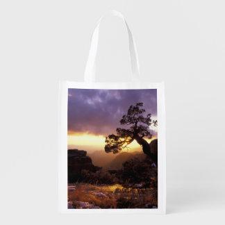 NA, USA, Arizona, Tucson, Sunset and lone Grocery Bag