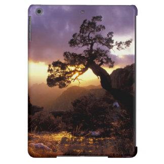 NA, USA, Arizona, Tucson, Sunset and lone iPad Air Cases