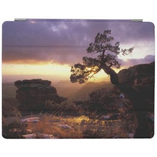 NA, USA, Arizona, Tucson, Sunset and lone iPad Smart Cover