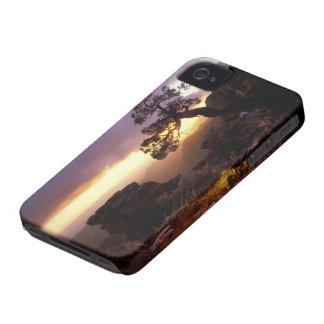 NA, USA, Arizona, Tucson, Sunset and lone iPhone 4 Case-Mate Case