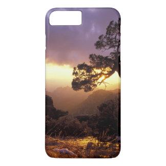NA, USA, Arizona, Tucson, Sunset and lone iPhone 8 Plus/7 Plus Case