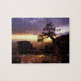 NA, USA, Arizona, Tucson, Sunset and lone Jigsaw Puzzle