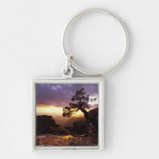 NA, USA, Arizona, Tucson, Sunset and lone Keychain