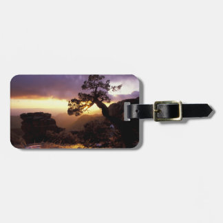 NA, USA, Arizona, Tucson, Sunset and lone Tags For Luggage