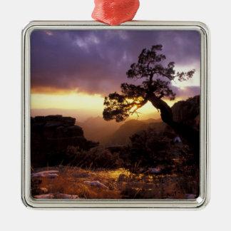 NA, USA, Arizona, Tucson, Sunset and lone Metal Ornament