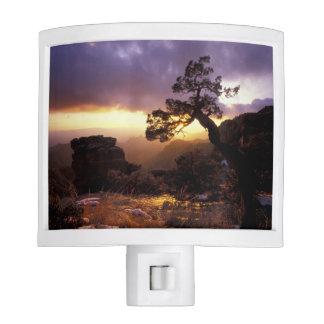 NA, USA, Arizona, Tucson, Sunset and lone Night Light